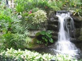 Thi công tiểu cảnh thác nước